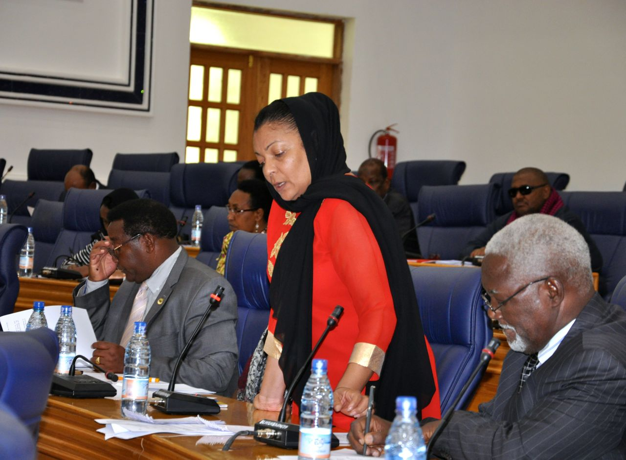 Hon Shyrose Bhanji, mover of the Resolution advocating for the protection of persons living with albinism